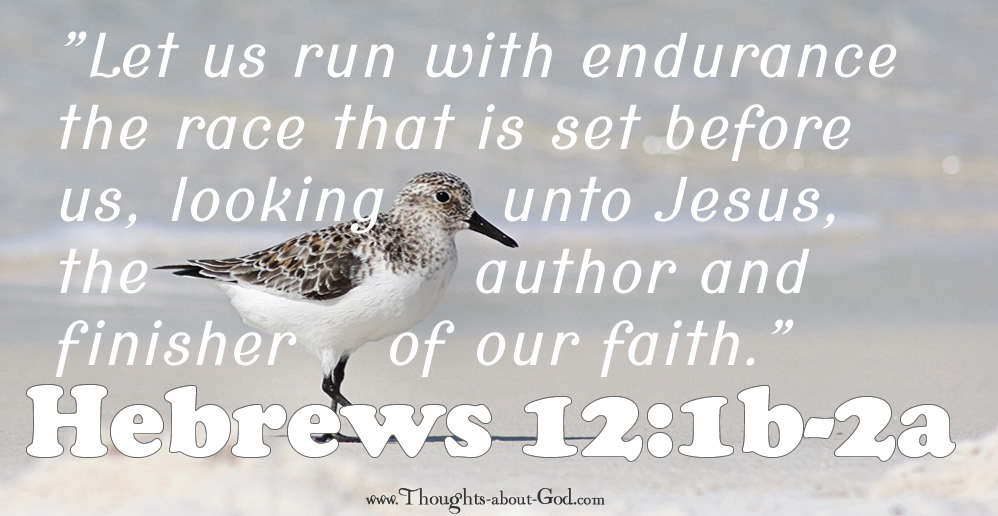 Hebrews 12:1a-2b Devotional on a Sandpiper and Running the Race