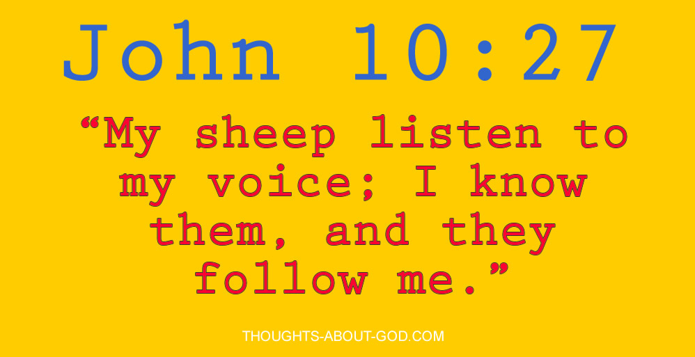 """John 10:27 """"My sheep listen to my voice; I know them, and they follow me."""""""