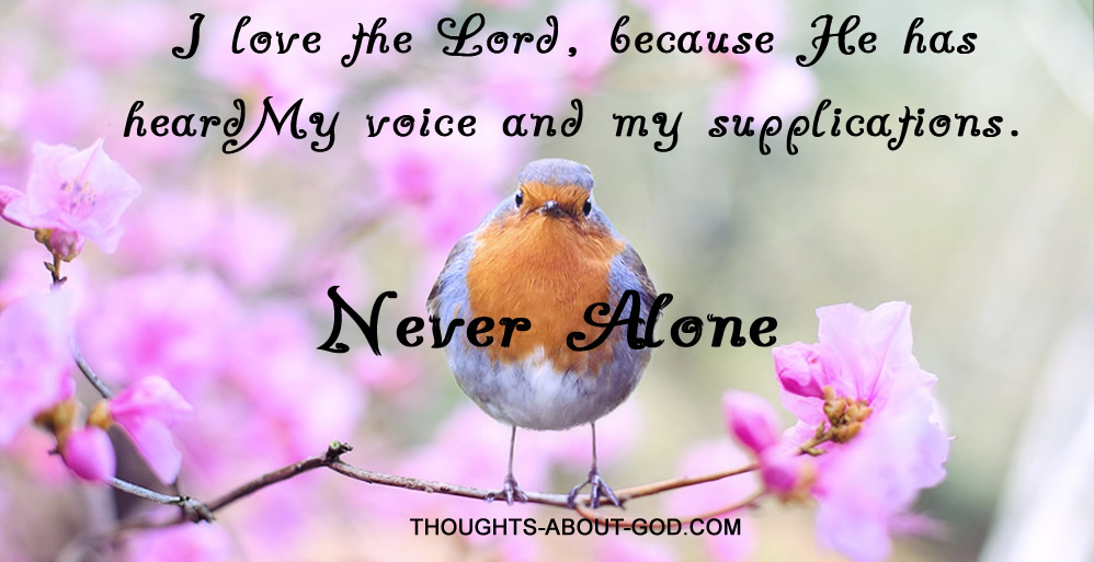 Never Alone I love the Lord, because He has heardMy voice and my supplications.