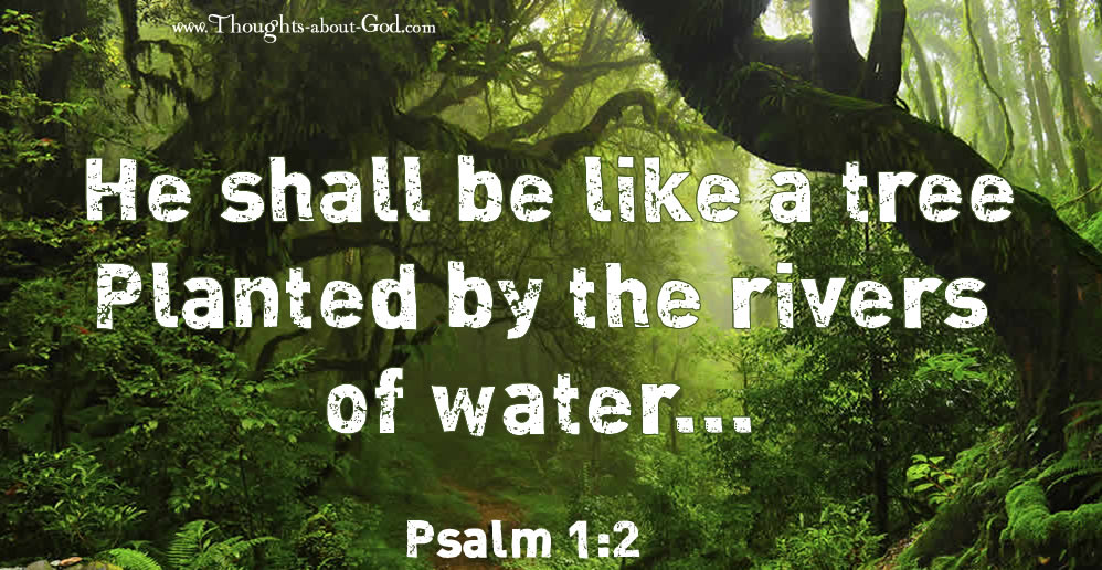 Psalm 1:2 He shall be like a tree Planted by the rivers of water...