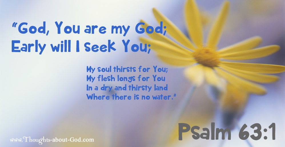 Psalm 63:1 God, You are my God; Early will I seek You;