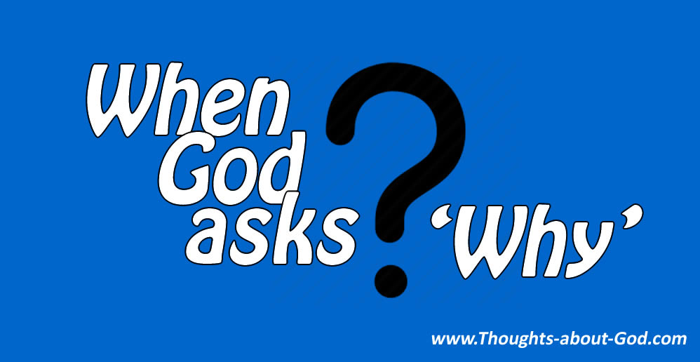 When God Asks 'Why'