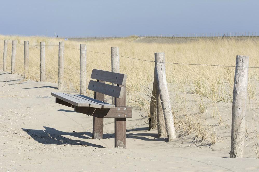 bench prairie field serene peaceful